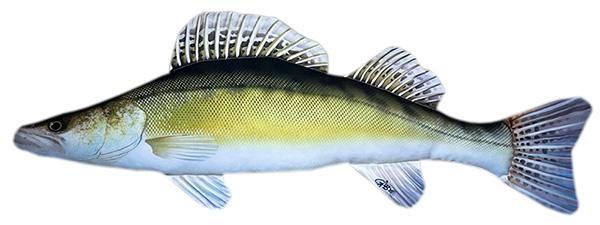 Halas párna- Süllő - nagy